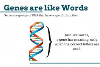 Genes are like words