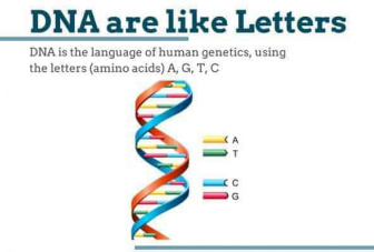 DNA are like letters